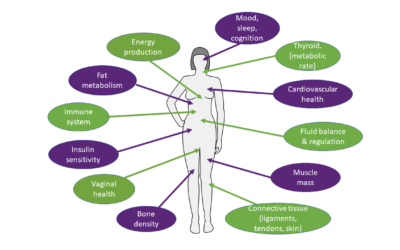 Women's hormone balance – its more than just about making babies!